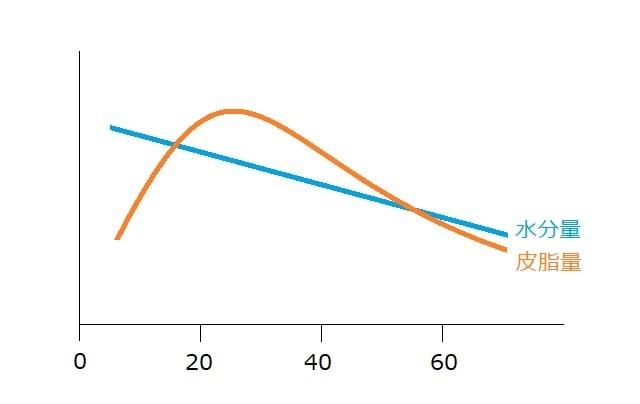 水分量と皮脂量の変化